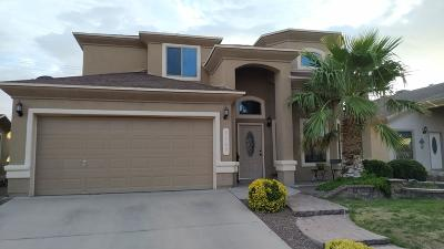 El Paso Rental For Rent: 3169 Diego Aidan Drive