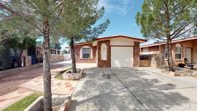 Single Family Home For Sale: 1045 Luis Lane