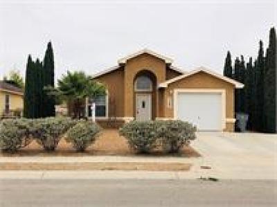 El Paso Single Family Home For Sale: 2287 Tierra Blanda Drive