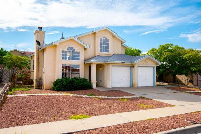 El Paso Single Family Home For Sale: 7548 Plaza Taurina Drive