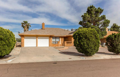 El Paso Rental For Rent: 10104 Cisco Lane