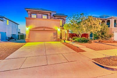 El Paso Single Family Home For Sale: 527 Sarum