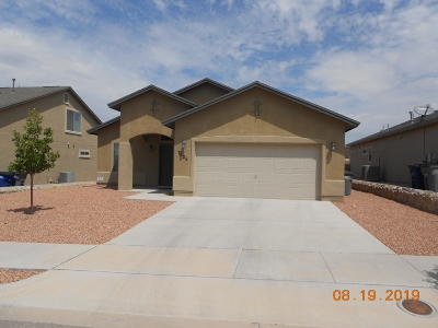 El Paso Single Family Home For Sale: 7625 Mammoth Lane