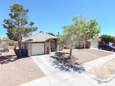 El Paso Single Family Home For Sale: 6621 Malachite Court