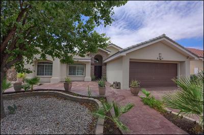 El Paso Single Family Home For Sale: 6279 Viale Del Sol Avenue