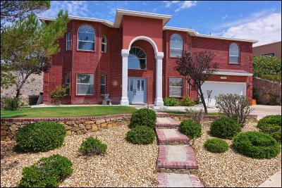 El Paso Single Family Home For Sale: 1017 Via De La Paz Drive