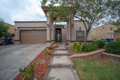El Paso Single Family Home For Sale: 3025 Solar Point Lane