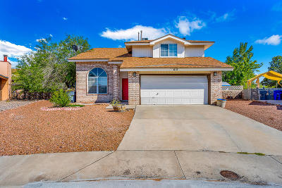 El Paso Single Family Home For Sale: 612 Rainwater Court