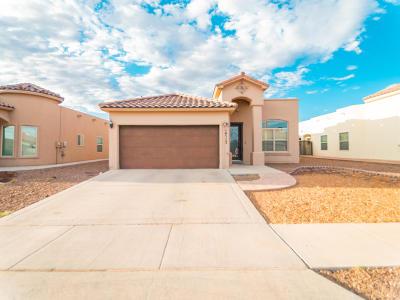 El Paso Single Family Home For Sale: 14517 Christian Castle