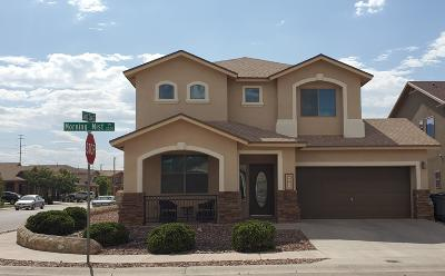 El Paso Single Family Home For Sale: 2201 Morning Mist Place