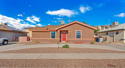 El Paso Single Family Home For Sale: 3636 Cave Palm Place