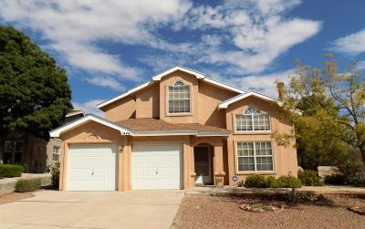 El Paso Single Family Home Pending Accepting Offers: 1444 Sara Danielle Place