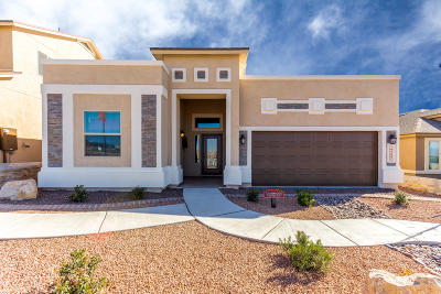 El Paso Single Family Home For Sale: 413 S Manzanita Drive