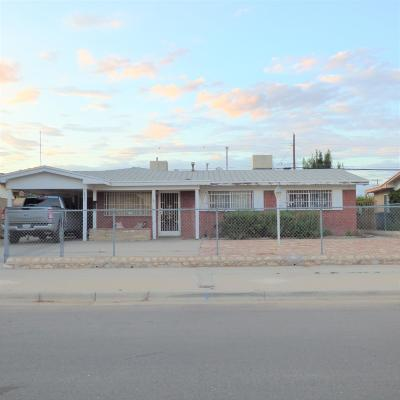 El Paso Single Family Home For Sale: 5829 Macaw Avenue