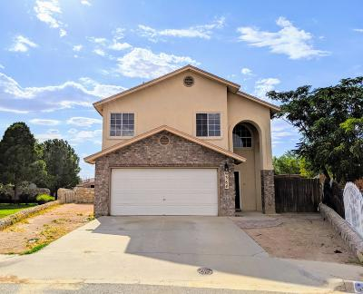 El Paso Single Family Home For Sale: 9384 Scooter Lane