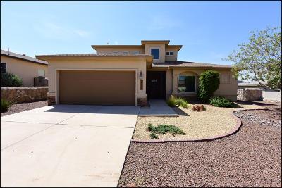 El Paso Single Family Home For Sale: 7332 Cibolo Creek Drive
