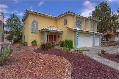El Paso Single Family Home For Sale: 533 Moondale Drive