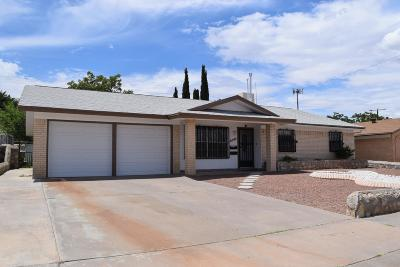 El Paso Single Family Home For Sale: 10349 Biscaine Street