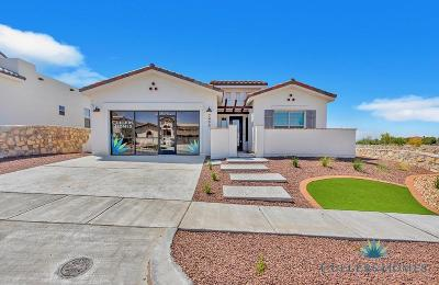 El Paso Single Family Home For Sale: 7356 Cimarron Gap Drive