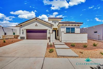 El Paso Single Family Home For Sale: 7388 Cimarron Gap Drive