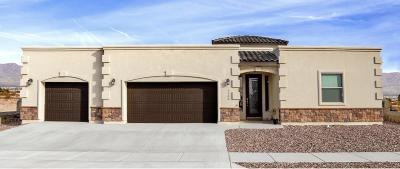El Paso Single Family Home For Sale: 5833 Valley Palm Drive