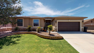 El Paso Single Family Home For Sale: 12198 Stansbury Drive