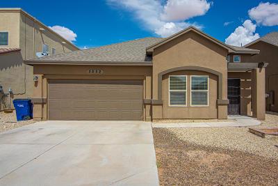 El Paso Single Family Home For Sale: 3852 Loma Cristobal Drive