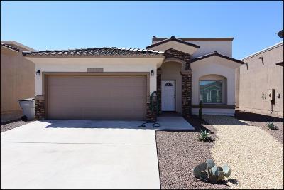 El Paso Single Family Home For Sale: 14376 Angel D. Garcia Court