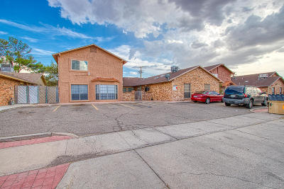 El Paso Multi Family Home For Sale: 10512 Ashwood Drive #A-D