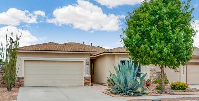 El Paso Single Family Home For Sale: 11202 Redstone Peak Place