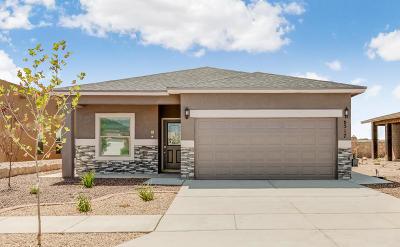El Paso Single Family Home For Sale: 6517 Tama Street