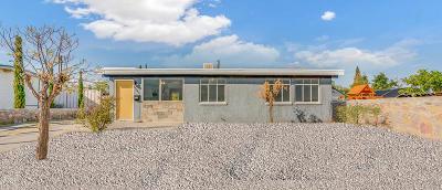 El Paso Single Family Home For Sale: 6243 Tejas Drive