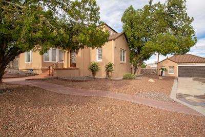 El Paso Single Family Home For Sale: 1516 Hardaway Street