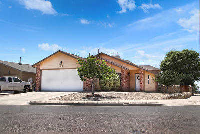 El Paso Single Family Home For Sale: 4045 Tierra Morena Drive