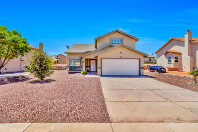 El Paso Single Family Home For Sale: 700 Vern Butler Drive
