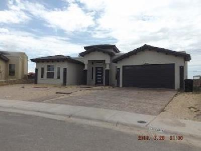 El Paso Single Family Home For Sale: 12498 Chamberlain