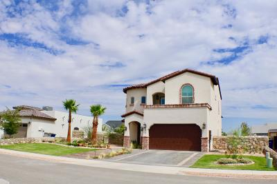 El Paso Single Family Home For Sale: 977 Abe Goldberg Drive