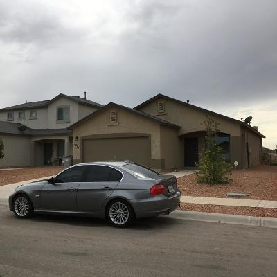 El Paso Single Family Home For Sale: 3297 Bashkir Trail