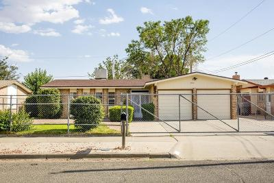 El Paso Single Family Home For Sale: 5904 Midas Drive
