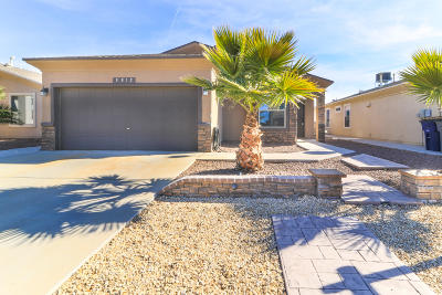 El Paso Single Family Home For Sale: 3812 Loma Adriana Drive