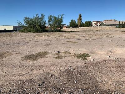Commercial For Sale: 1.97 Wildcat Drive