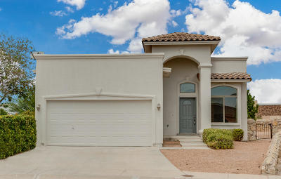 El Paso Single Family Home For Sale: 5977 Red Stone Rim Drive