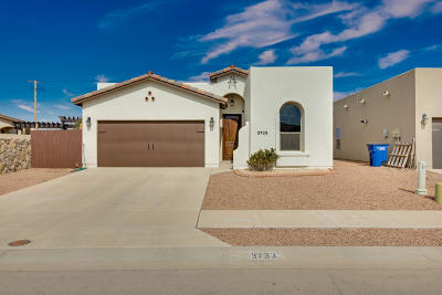 El Paso Single Family Home For Sale: 3733 Loma Adriana