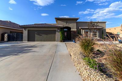 El Paso TX Single Family Home For Sale: $249,995