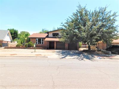 El Paso Single Family Home For Sale: 8908 Gallic Court