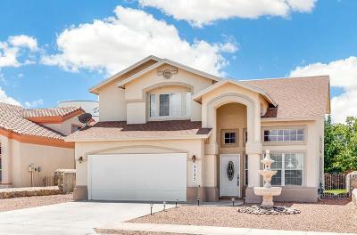 El Paso Single Family Home For Sale: 3725 Tierra Aurora Drive