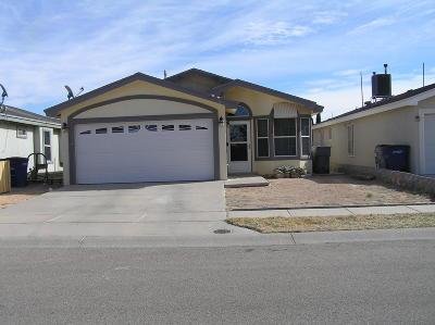 El Paso Single Family Home For Sale: 3916 Tierra Zafiro Drive