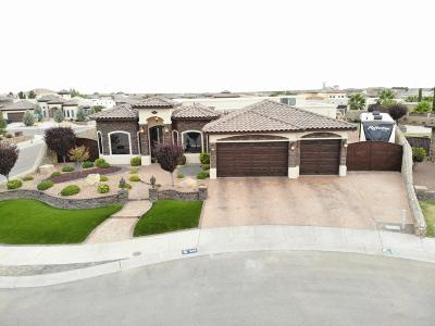Single Family Home For Sale: 3109 Garden Rock Drive