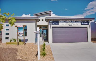 El Paso Single Family Home For Sale: 794 Ovington Road