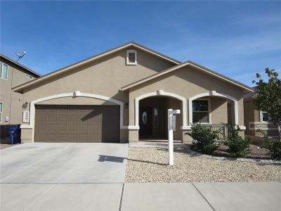 El Paso Rental For Rent: 1274 Zellige Street